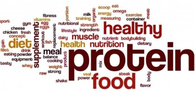 protein-trend-725x346